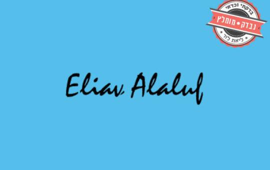 אליאב אללוף, יועץ שיווקי ואסטרטגי ומייסד סדנת ״העקרון המנחה״